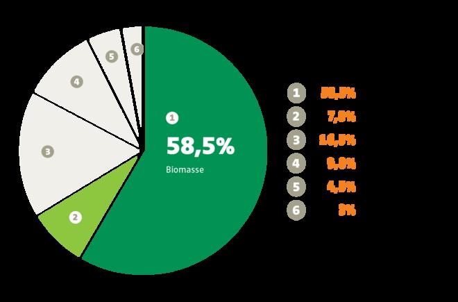 Anteil der Bioenergie bei den erneuerbaren Energien in der EU (2016)