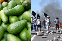 Collage: Avocados (li.) - Demonstration in Chile (re.)