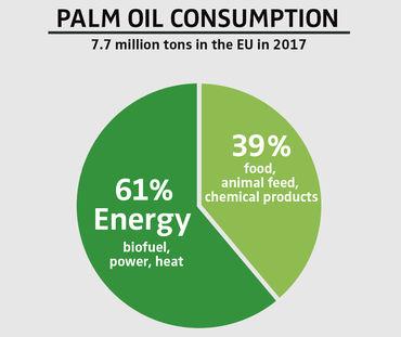 PALM OIL CONSUMPTION 2017