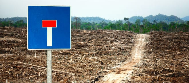 EU Biokraftstoff Politik Sackgasse