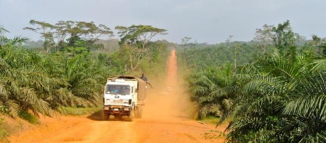 Ein Lkw fährt durch eine Palmöl-Plantage in Liberia