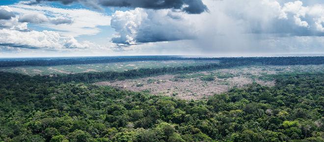 Luftaufnahme Urwälder in der Nähe des Amazonas-Dorfes Tamshiyacu in Peru