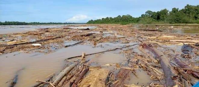 Abholzung verstopft einen Fluss mit Baumstämmen