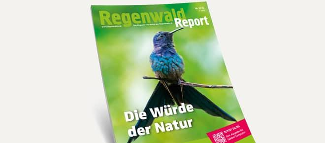 3D-Ansicht des Covers vom Regenwald Report 1/21