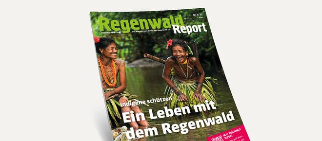 3D-Ansicht des Covers vom Regenwald Report 3/20