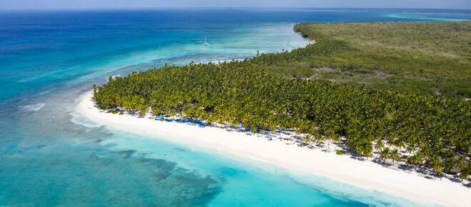 Luftaufnahme von tropischen Insel Saona mit Kokospalmen und türkisfarbenem karibischen Meer