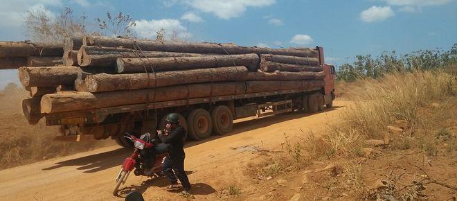 Lkw schmuggelt illegal in Kambodscha geschlagenes Holz nach Vietnam