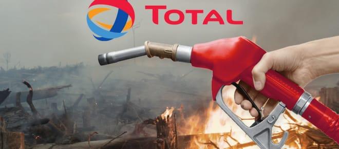 Collage - Total Brandrodung für Palmöl