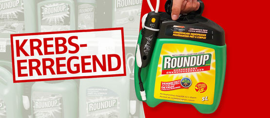 Monsanto Roundup Krebserregend