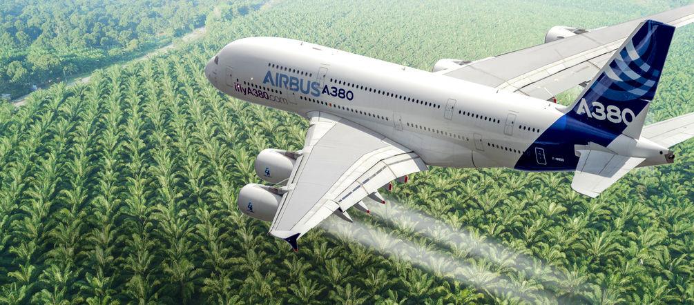 Indonesien Erpresst Die Eu Flugzeuge Sollen Palmol Tanken Rettet Den Regenwald E V