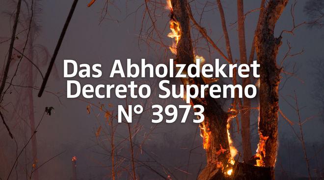Regenwald in Bolivien brennt