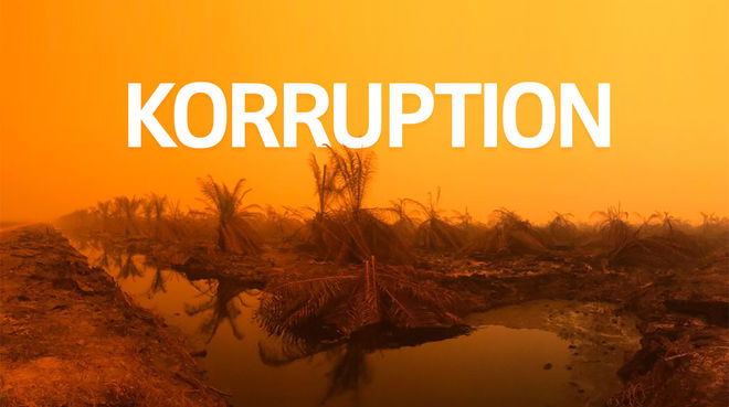 Brände in Sumatra + Text KORRUPTION