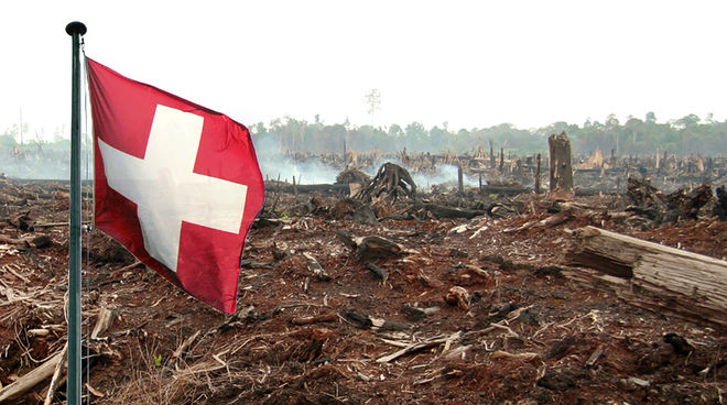 Schweizer Flagge verbrannter Wald