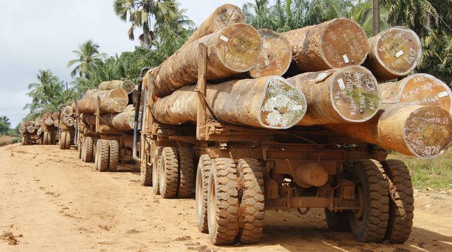 Mit Baumstämmen beladene Lastwagen in Liberia