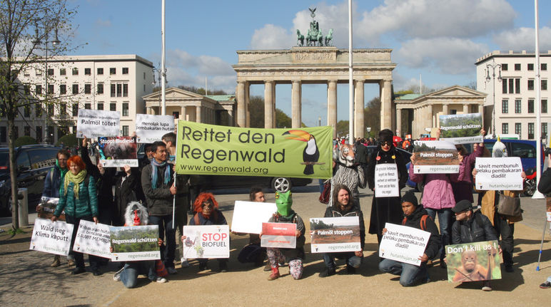 Regenwald Demo - 18. April 2016 - RdR vor Brandenburger Tor