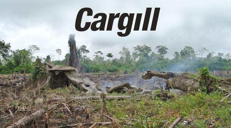 Brandrodung + Cargill Logo