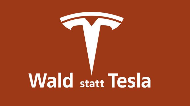 Tesla statt Wald