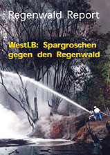 Cover RegenwaldReport 03/2001