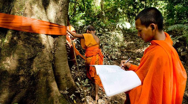 Mönche schützen Regenwald