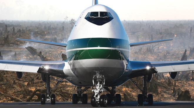 Flugzeug über verbranntem Regenwald