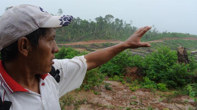 Ein Kleinbauer zeigt eine frische Rodungsfläche im  Amazonaswald