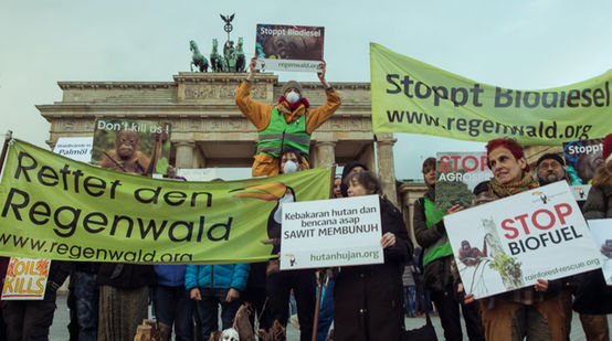 Demo Indonesien Rettet den Regenwald Berlin Brandenburger Tor