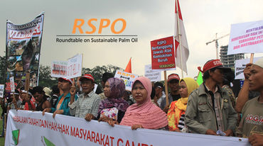 RSPO-Demo in Indonesien