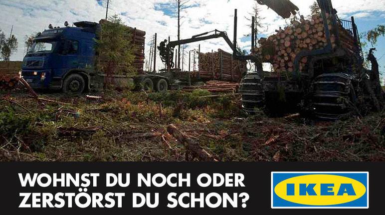 Ikea Wohnst Du Noch Oder Zerstörst Du Schon Rettet Den Regenwald