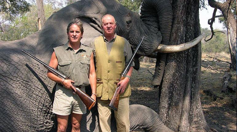 Das spanische Staatsoberhaupt und damaliger WWF-Ehrenpräsident König Juna Carlos posiert mit seiner Jagdflinte vor einem toten Elefanten in Botswana