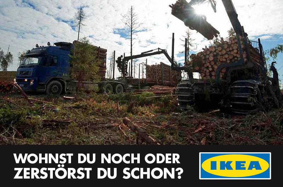 petition ikea wohnst du noch oder zerst rst du schon rettet den regenwald e v. Black Bedroom Furniture Sets. Home Design Ideas