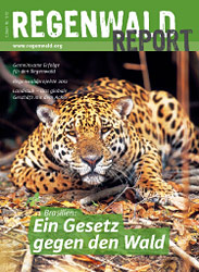 Cover Regenwald Report 01/2012