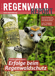 Cover Regenwald Report 04/2011