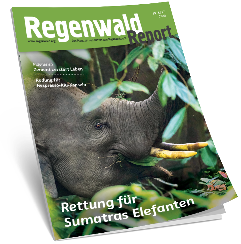 Cover Regenwald Report 01/2017