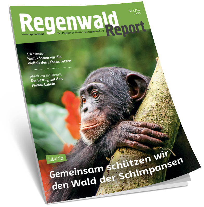 Cover Regenwald Report 03/2016