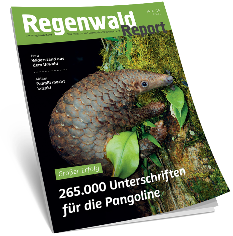 Cover Regenwald Report 04/2016