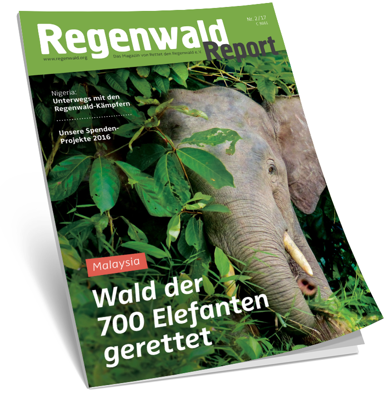 Cover Regenwald Report 02/2017