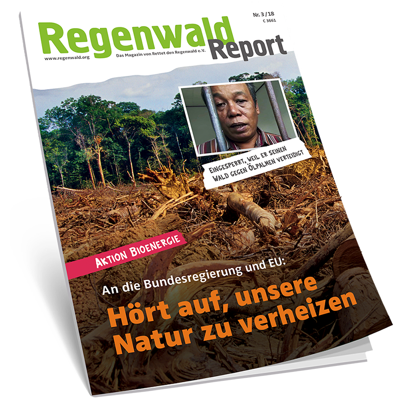 Cover Regenwald Report 03/2018