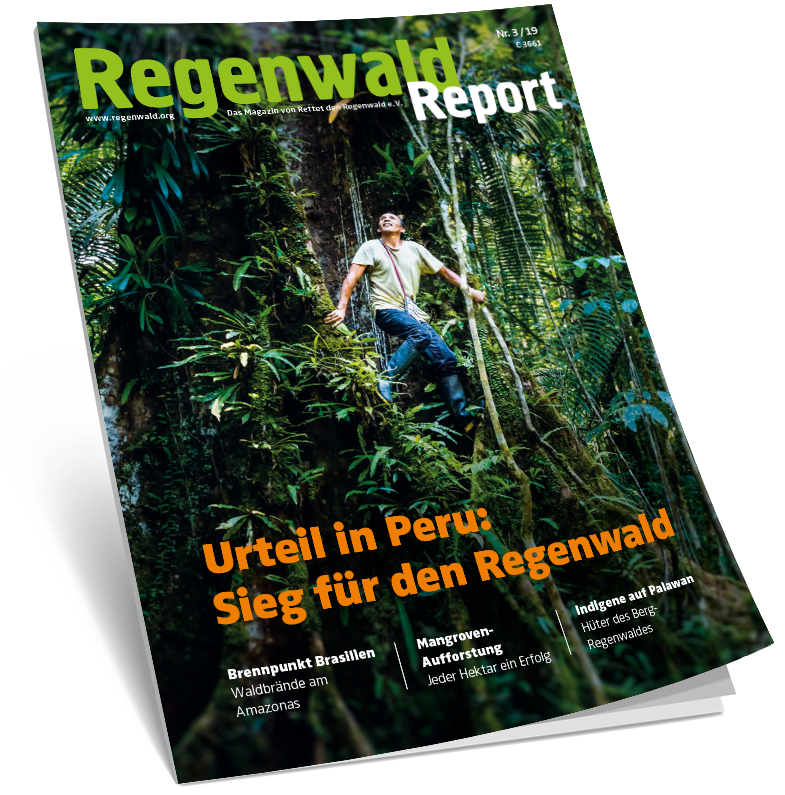 Cover Regenwald Report 03/2019