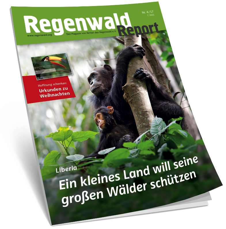 Cover Regenwald Report 04/2017