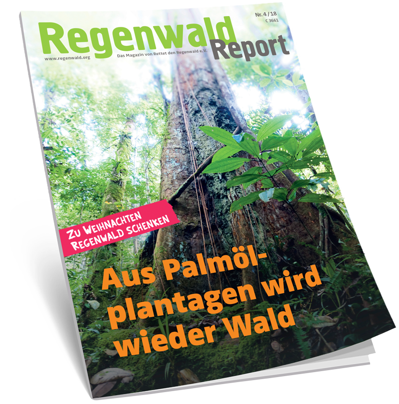 Cover Regenwald Report 04/2018