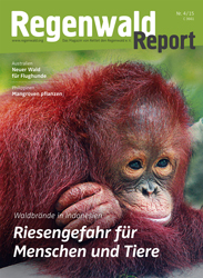 Cover Regenwald Report 04/2015