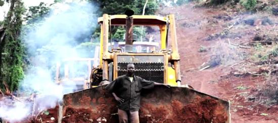 Bulldozer in Kalangala, Uganda, bei der Anlage einer Palmöl-Plantage.