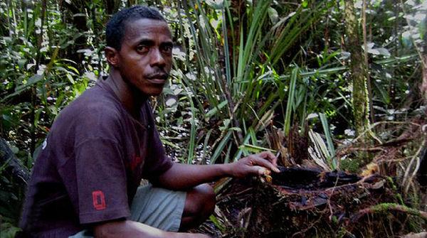 Armand Marozafy im Wald von Madagaskar