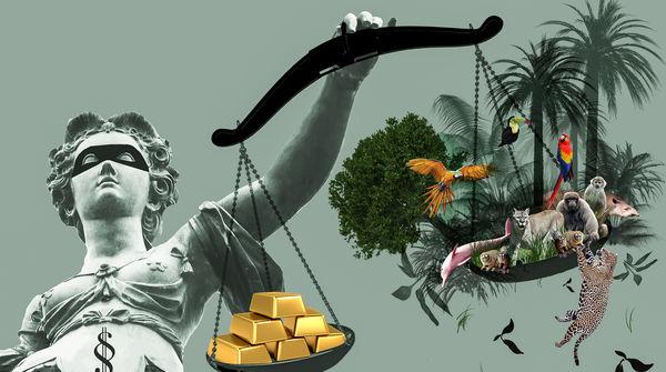 In Justicias Hand die Waagschalen mit Gold auf der einen und Regenwald auf der anderen Sdeite. Das Gold ist schwerer.