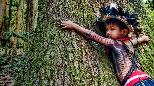 Kind am Baum - Paiter Surui