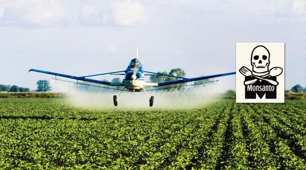 Ein Flugzeug versprüht Herbizide auf einer Soja-Plantage