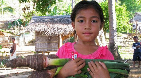 Mädchen trägt große Staude Taro-Gemüse im Arm, im Hintergrund Dorfhütten