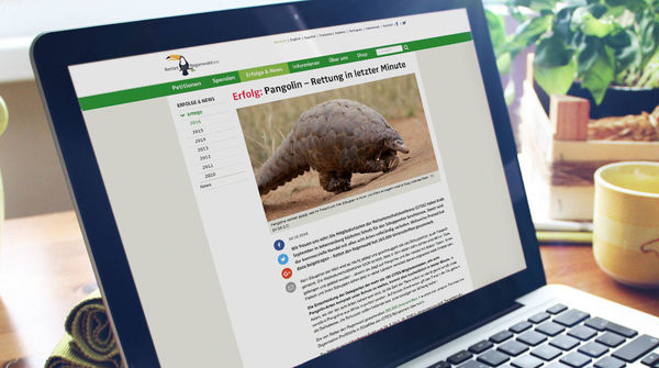Website Mockup Pangolin