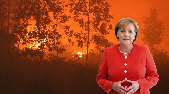Collage: Angela Merkel vor Waldbrand in Indonesien
