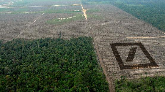 Deutsche Bank bringt Abholzung an die Börse